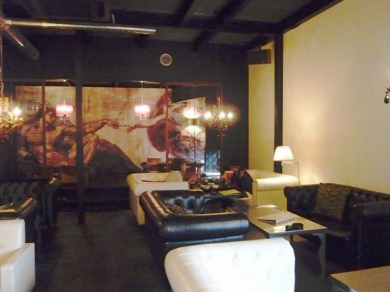 DRACAENA CONCINNA HOTEL