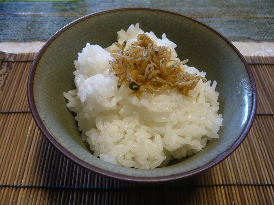 ジャコのせの白ご飯です。