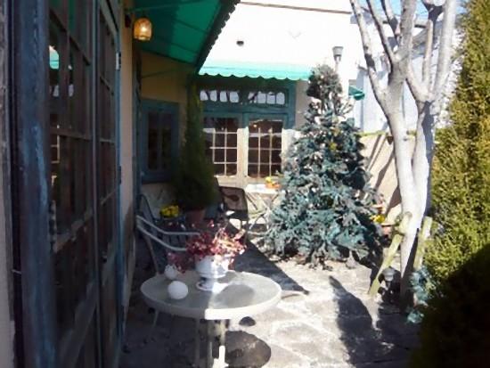 中庭にはテーブルとクリスマスライトアップ用のツリーが。