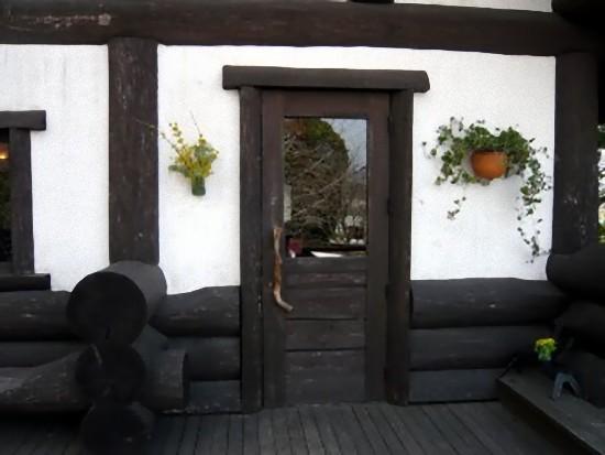 玄関も素敵な造りになっています。