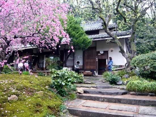 何といっても素晴らしいのはお庭です。山をバックにした400坪ほどの敷地に母屋と離れ、茶室が点在し、造り込んでいない自然なお庭が素敵です。