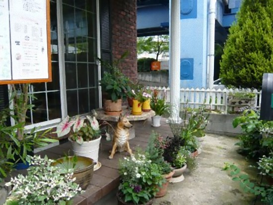 アプローチやお庭には季節の花々が植えられよく手入れされています。