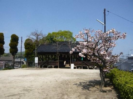 「八幡神社」に上がってみました。
