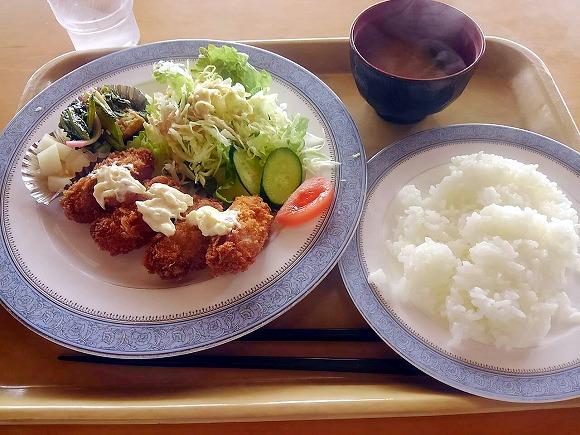 日替定食 かきフライ