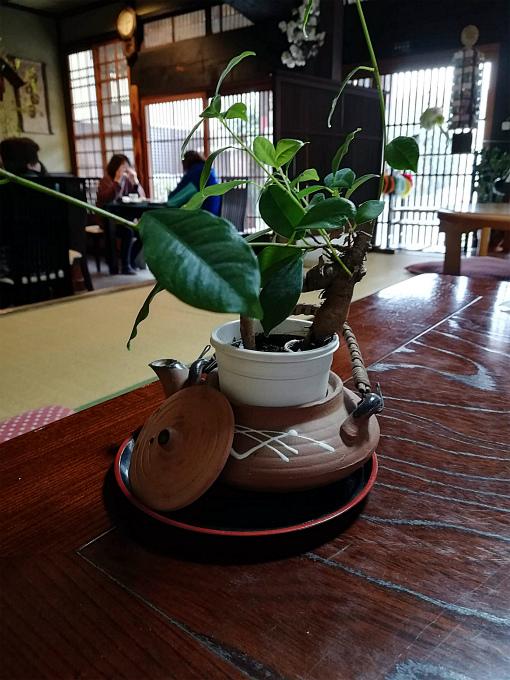 テーブルのミニ鉢