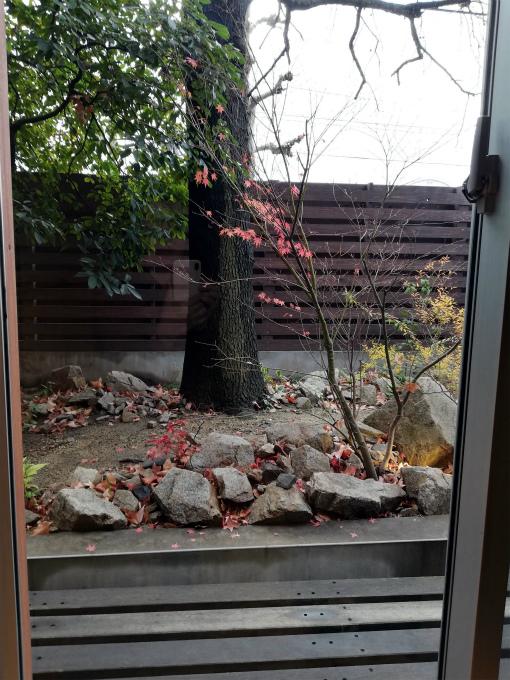 でいるの中庭