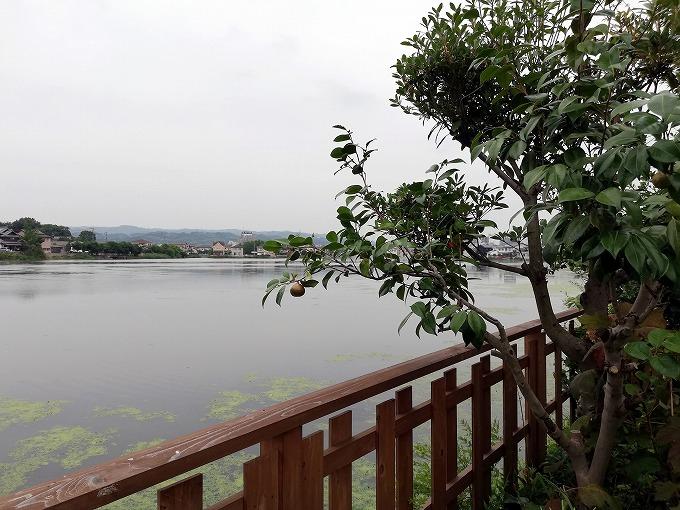 溜川(ためがわ)